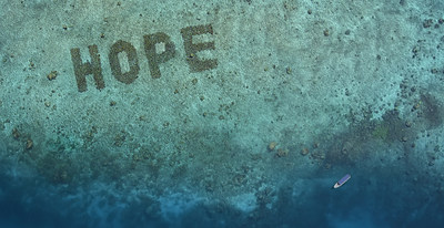 Support Coral Reef Restoration Efforts