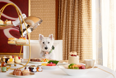 Bone Appetite, the new room service doggy dining menu, elevates canine cuisine to an artform.